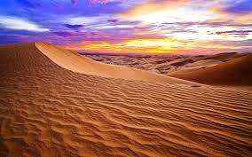 Professional from the desert- HuguetteRahme