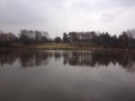 Lake 20878